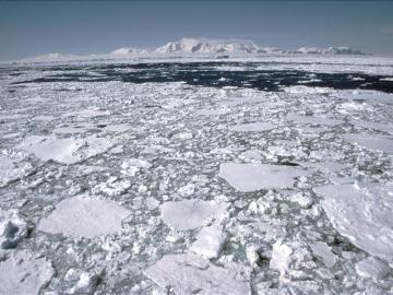 Frío polar (15-04-2013)
