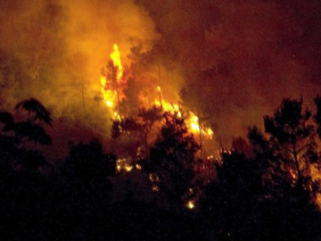 Incendio forestal en Vallirana (Barcelona)