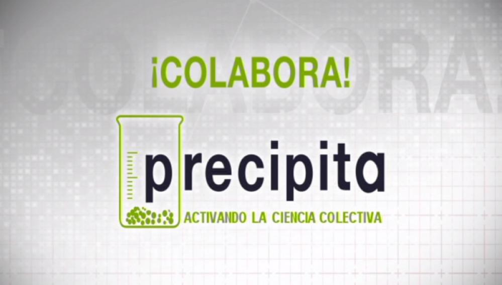 Nace 'Precipita', la primera plataforma pública de crowdfunding en España para financiar proyectos científicos