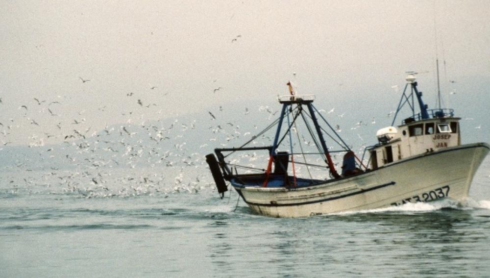 Pesca de bajura en la costa catalana