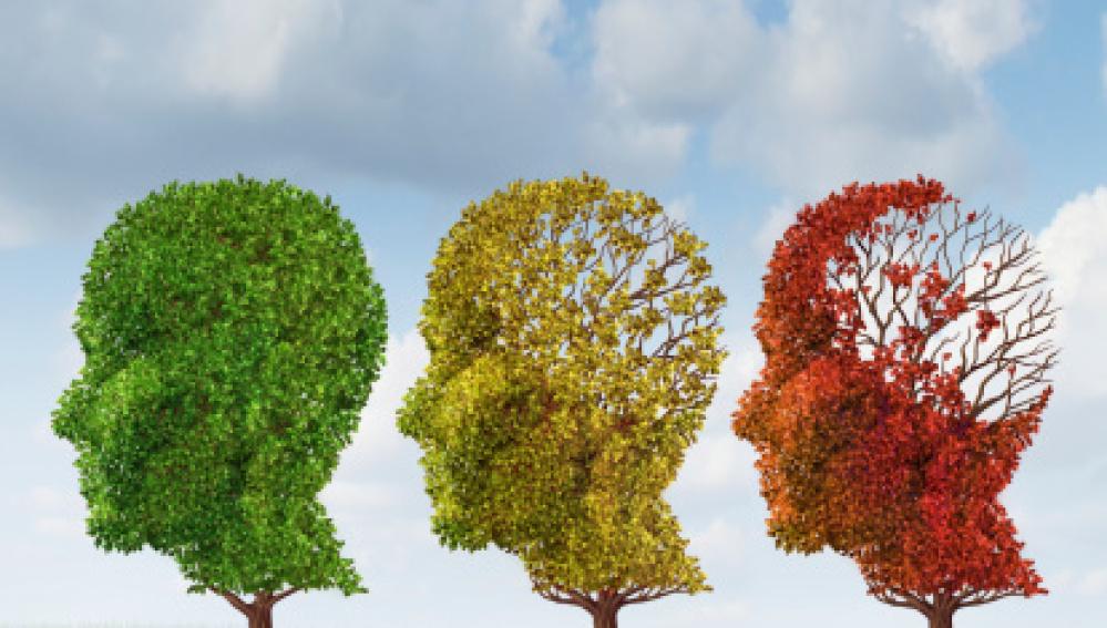 Cinco precauciones contra la demencia senil