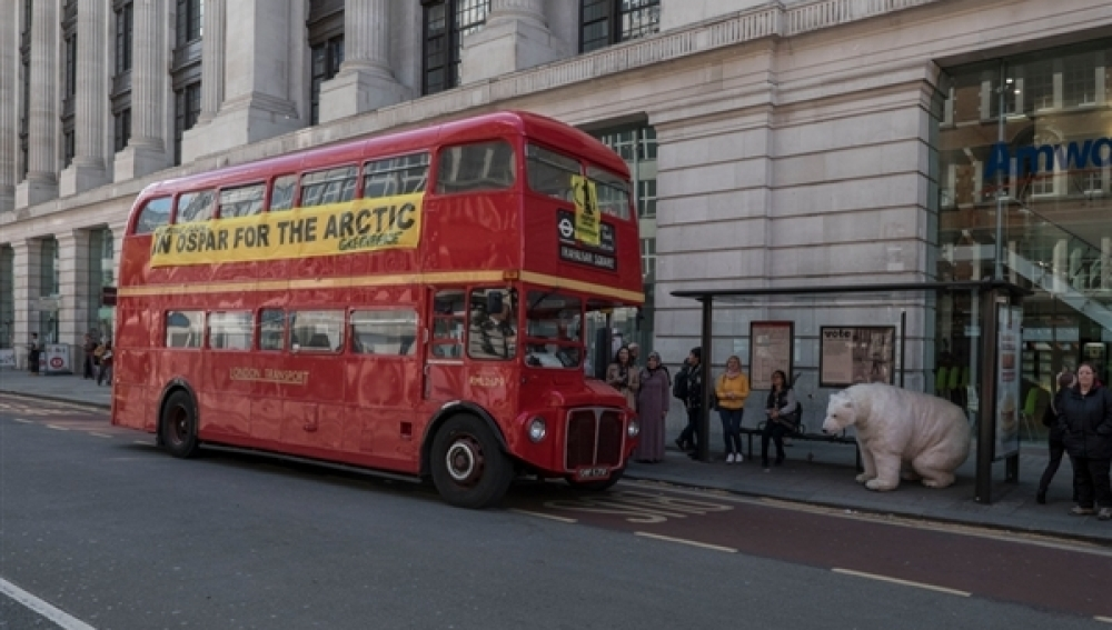La osa Paula viaja a Londres para pedir la protección del Ártico