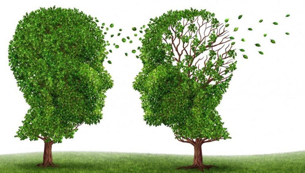 El Alzheimer puede comenzar a desarrollarse a los 30 años