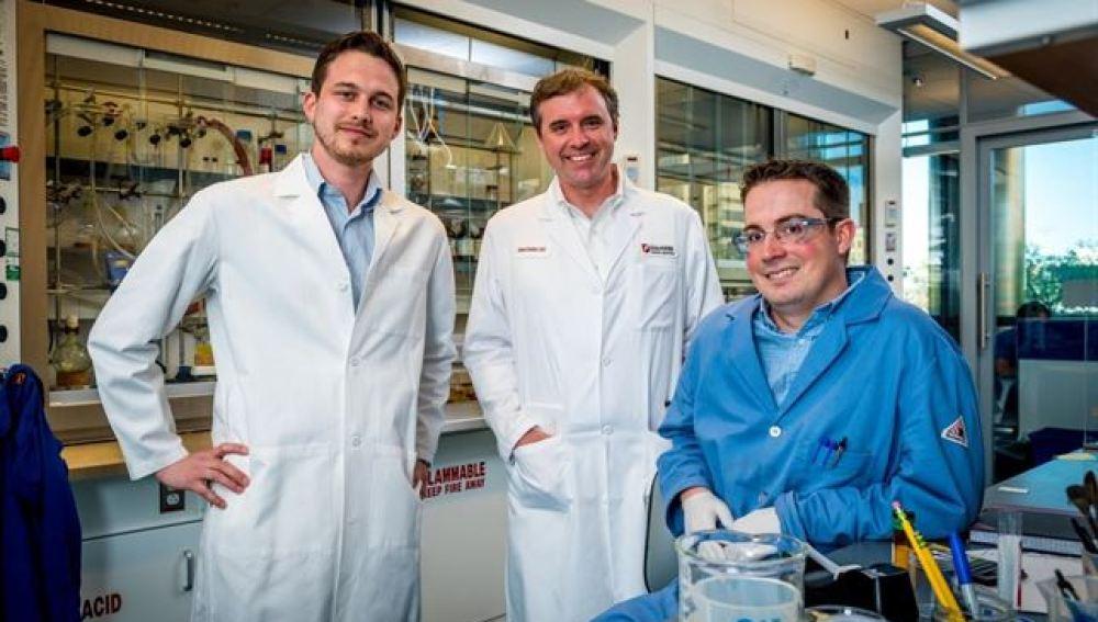Investigan una nueva vía para 'desintegrar' células cancerosas