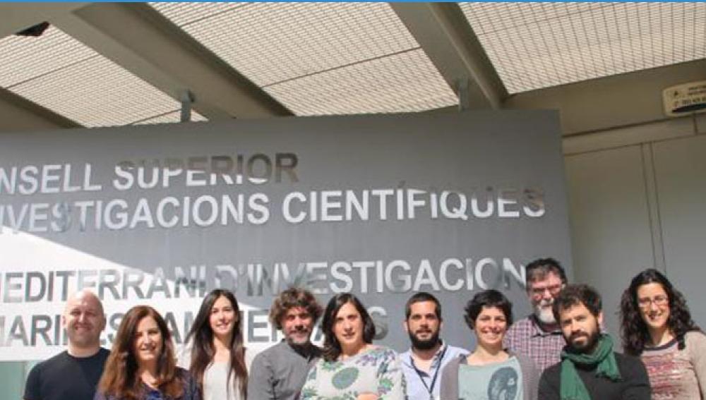 Investigadores del CSIC