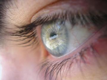Descubren el mecanismo molecular que causa las molestias de la enfermedad del ojo