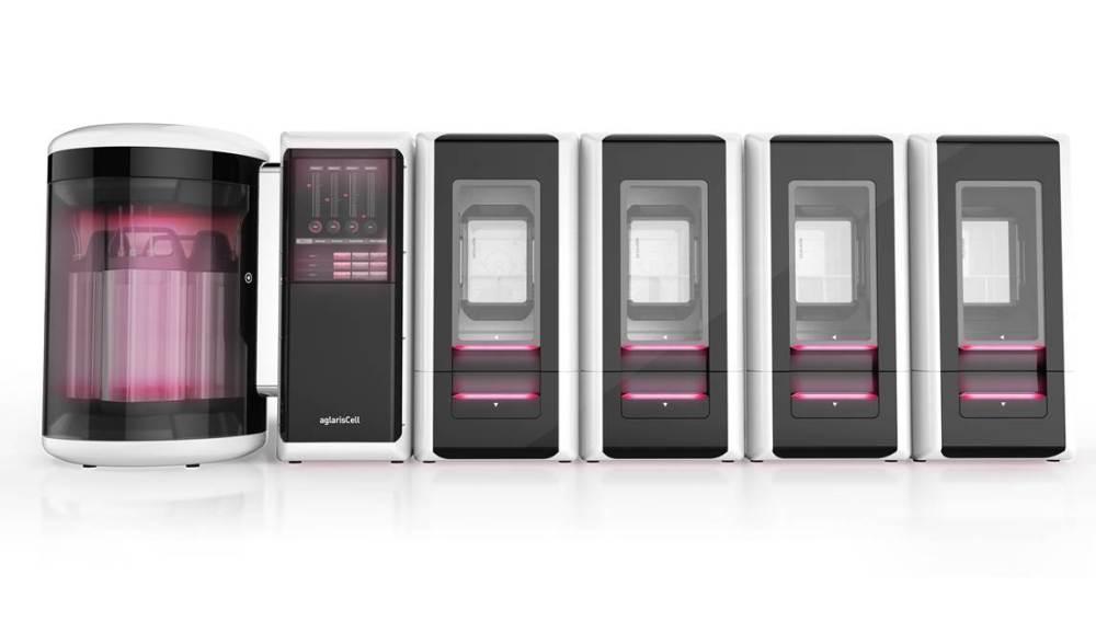 Biorreactor que cultiva células madre