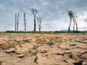 La mitad del planeta podría ser una zona árida en 2100