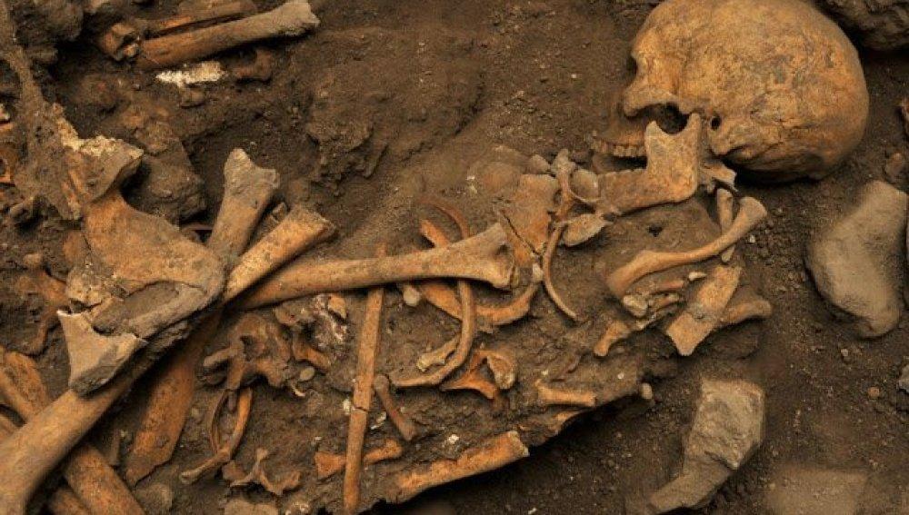 Fósiles de homínidos descubiertos en la Cueva El Mirador, en Atapuerca