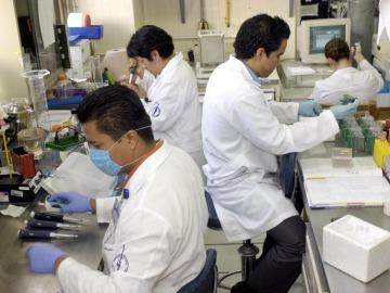 Científicos explican cómo las centrales de energía de las células sobreviven a los ataques
