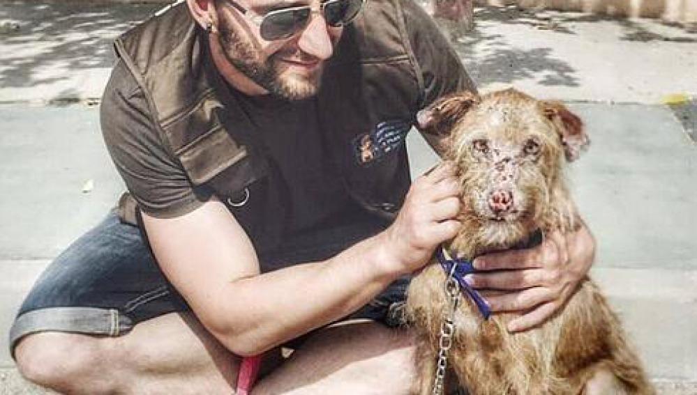 Dani Rovira concienciado contra el maltrato animal