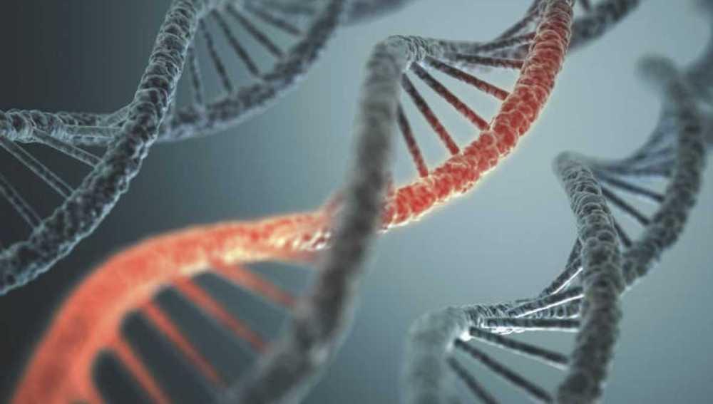 Teoría de redes de Internet para descifrar la red de comunicación del epigenoma
