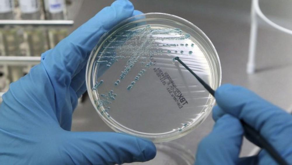 Reino Unido autoriza la modificación genética de embriones humanos