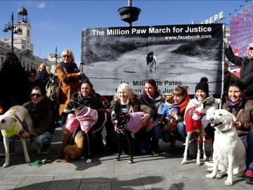 Multitudinaria protesta en contra del uso de animales para la caza