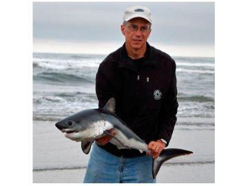 Un hombre encuentra un pequeño tiburón en una playa de EEUU