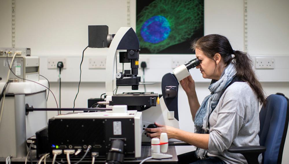 Científicos estadounidenses crean un medicamento inyectable contra el cáncer