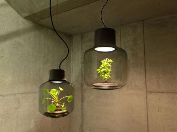 Mygdal Plantlamp, una lámpara para cultivar plantas sin luz natural