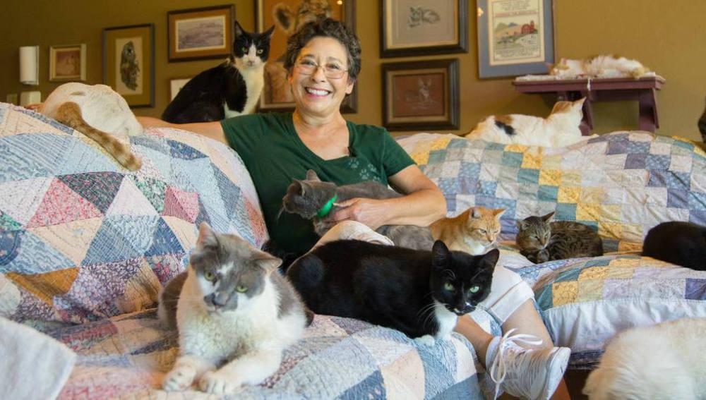 Lynea Lattanzio vivía con mil gatos