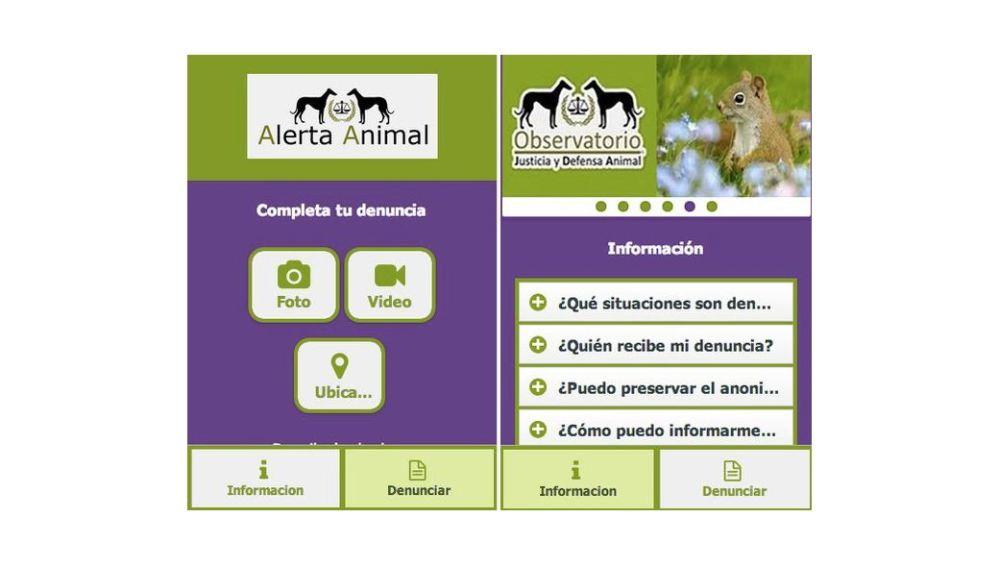 'Alerta Animal', la primera 'app' para denunciar casos de maltrato animal  en España