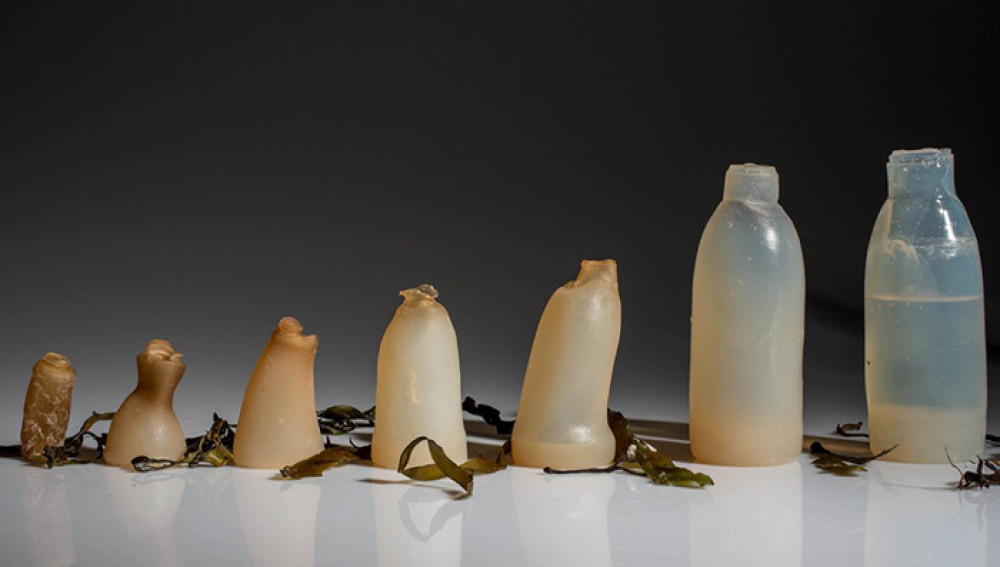 Botellas biodegradables hechas de algas