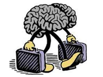 España, uno de los países en los que más se produce la 'fuga de cerebros'