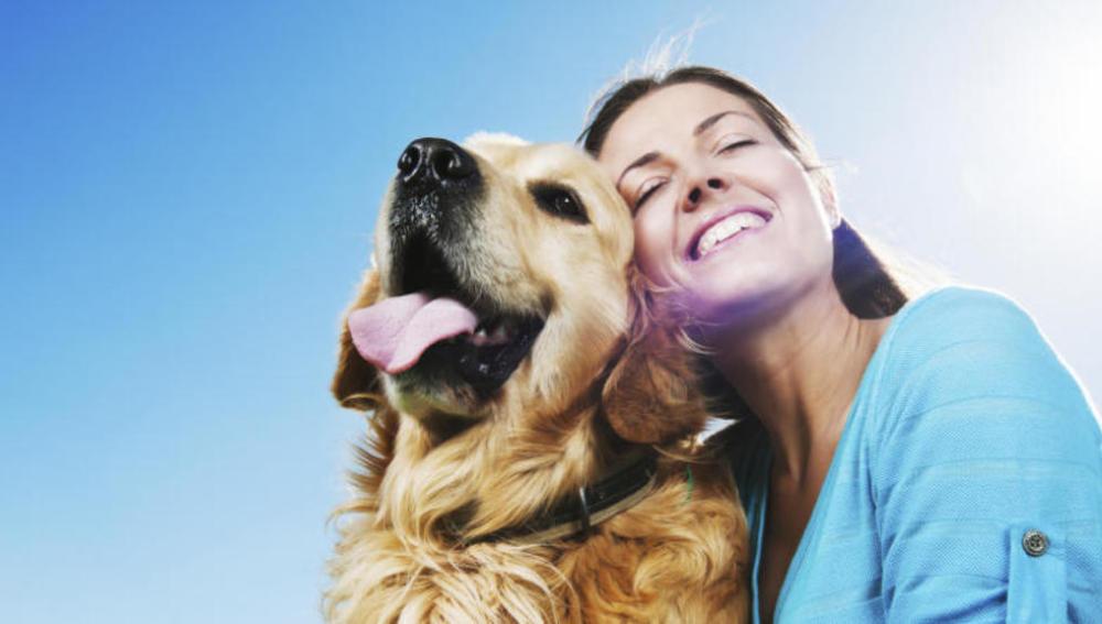 Dos amigas crean una agencia para encontrar a mascotas perdidas y devolverlas a su familia