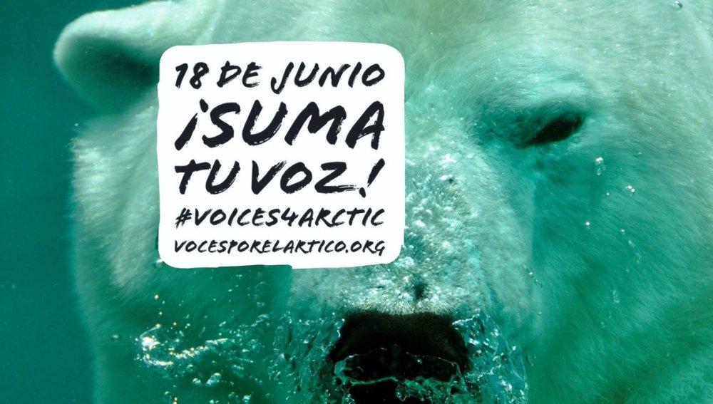 ¡Suma tu voz para proteger el Ártico con Greenpeace!