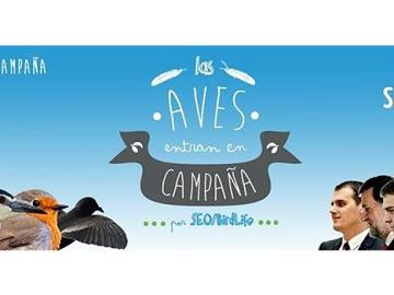 Las aves 'entran en campaña electoral' con peticiones a los principales candidatos políticos