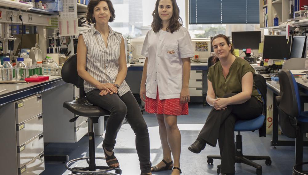 Científicos identifican biomarcadores que predicen el efecto de los fármacos antiangiogénicos en cáncer renal