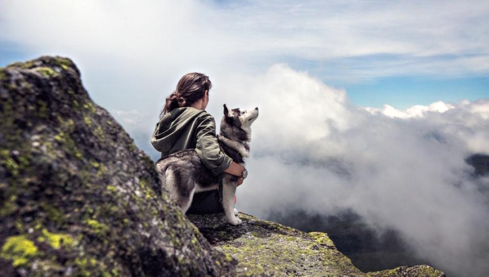 Un perro disfruta con su dueño del paisaje