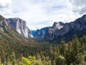 Los bosques son los mayores repositorios de biodiversidad terrestre