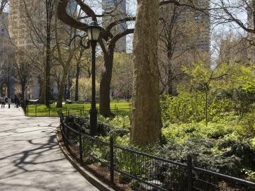 Madrid y Barcelona, entre las diez ciudades europeas que se pueden beneficiar por el arbolado