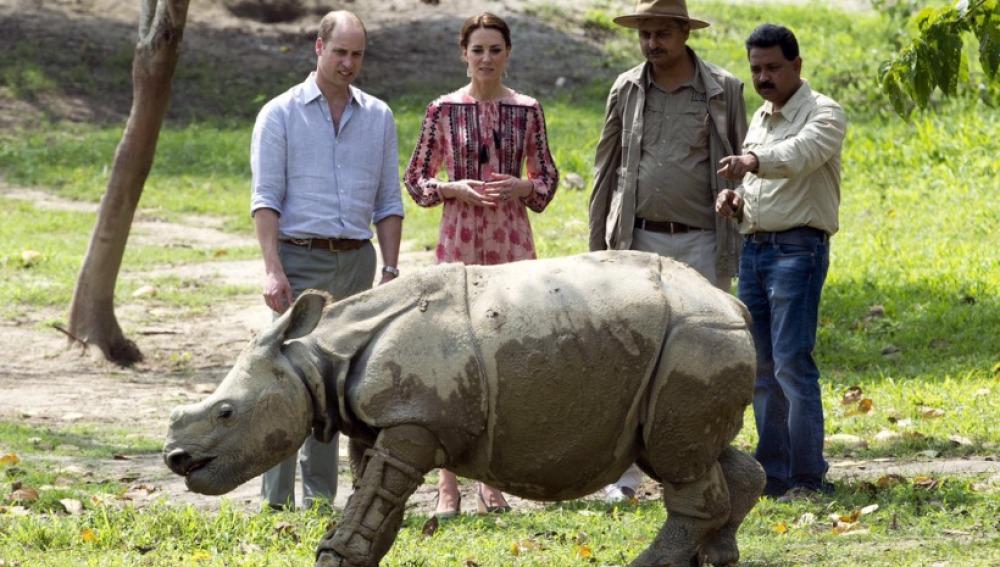 Los duques de Cambridge visitan una cría de rinoceronte