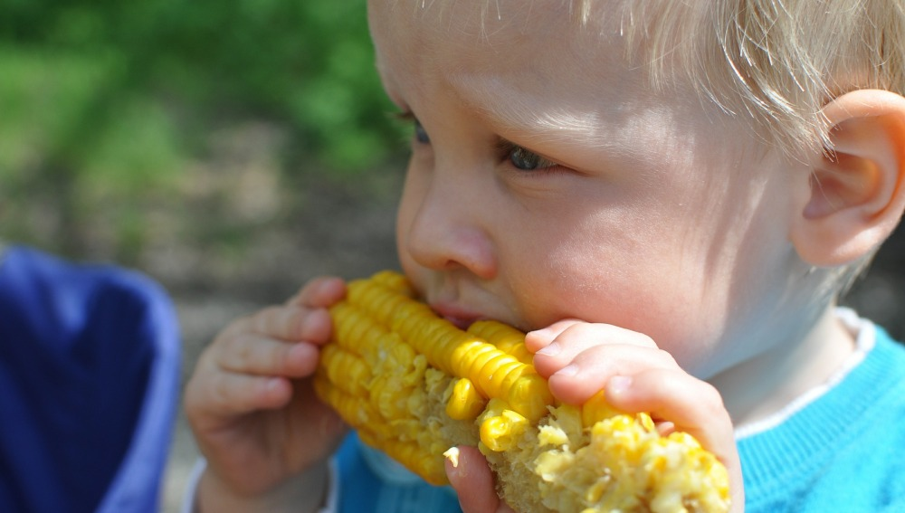 Alimentos que ayudan a controlar el colesterol en los niños