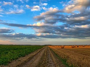 La mitad del suelo de España podría ser incultivable en 2040