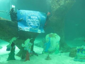 Zoo Aquarium de Madrid instala su Belén Navideño entre tiburones