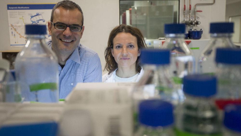 Científicos españoles descubren que las células tumorales necesitan grasa para hacer metástasis