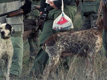 Más de 25 millones de animales son abatidos cada año como consecuencia de la caza en España
