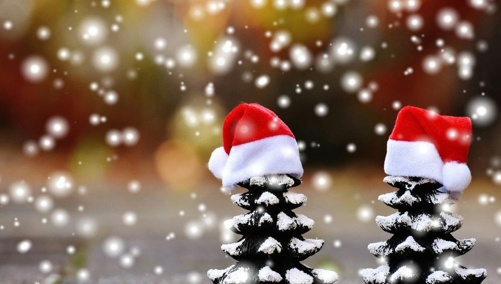 Cinco ideas para pasar una Navidad más verde