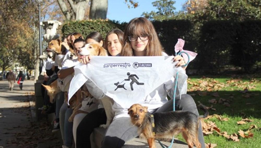 Los perros toman las calles de Madrid en la #SanPerrestre 2016