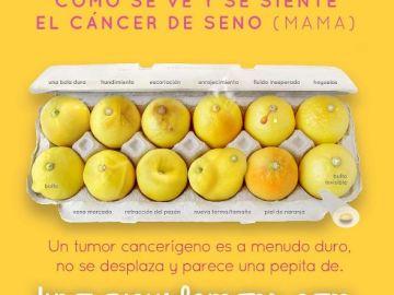#KnowYourLemons: Una imagen con doce limones para aprender a detectar el cáncer de mama