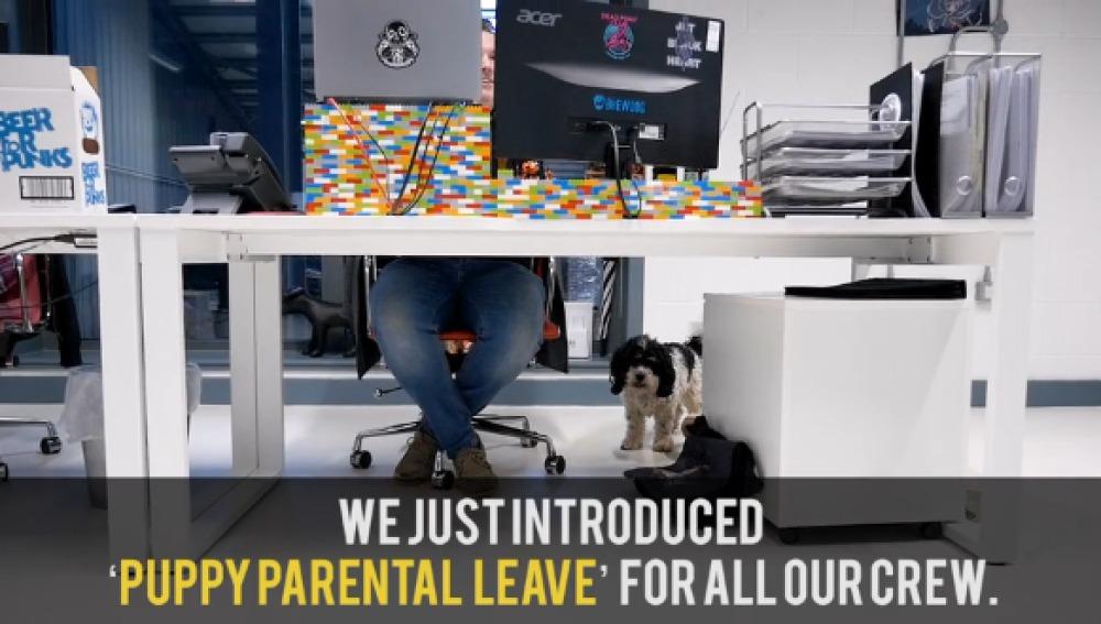 Una empresa ofrece una semana de vacaciones pagadas a los empleados que tengan una nueva mascota