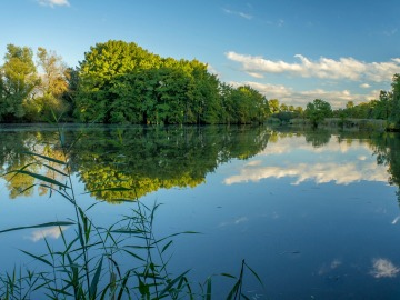 El calentamiento de los estanques podría acelerar el cambio climático
