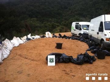 Hallan 87 cadáveres de perros y gatos hacinados en bolsas de basura en Girona