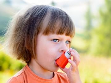 Un tipo de levadura presente en el intestino puede predecir el asma infantil