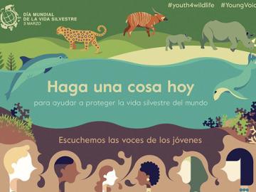 Escuchemos las voces de los jóvenes en el Día Mundial de la Vida Silvestre