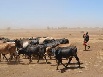 Solo el 10% de la ayuda contra el cambio climático para las regiones pobres llega a su destino