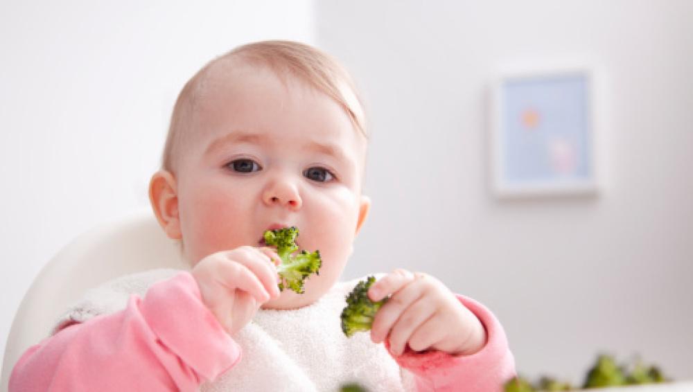 'Baby Led Weaning', un método para que los bebés cojan autonomía en la comida