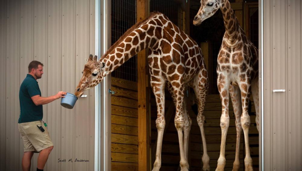 April junto a Oliver, su pareja en el zoo