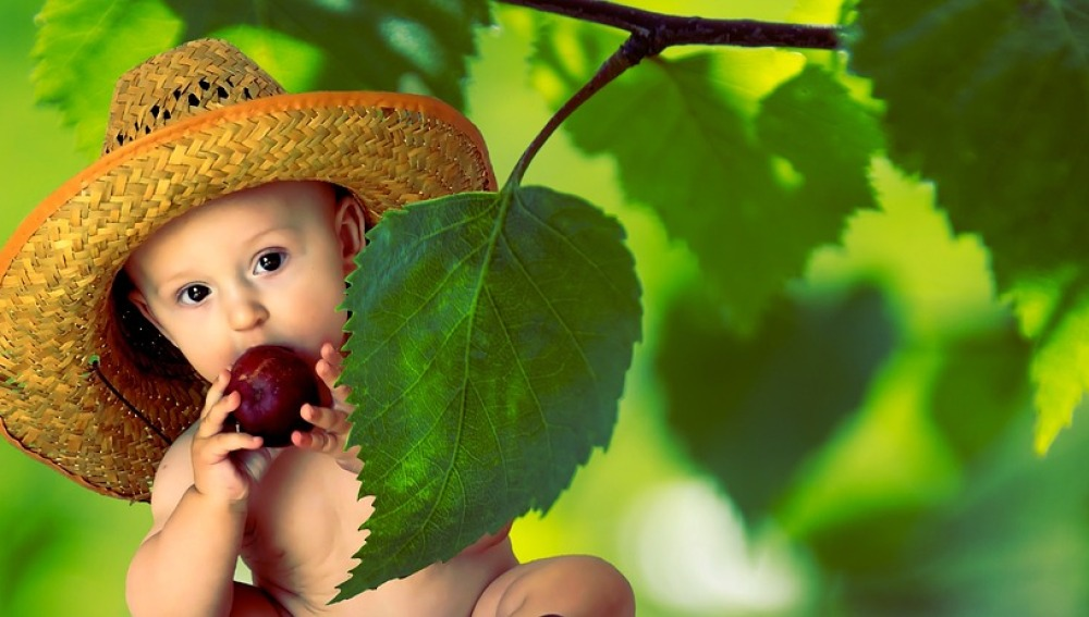 Diez frutas y verduras que podréis disfrutar en primavera